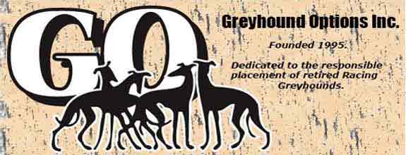 Greyhound Options Inc.