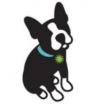 Pawsh Boston Terrier logo
